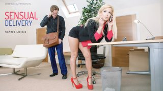 Sensual Delivery - Office Obsession